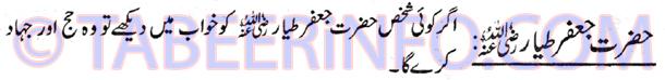 hazrat-jafar-tayaar