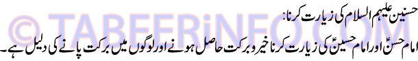 husain-alai-hi-salam-ki-zia
