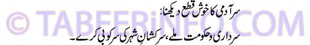 sar-admi-ka-khush-qata-dekh