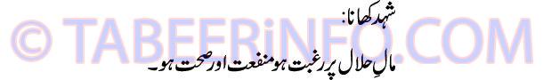 shahed-hani-khana-tabeer