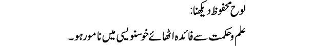 looh-e-mahfooz-dekhna-tabee