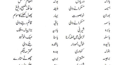 Photo of Islamic Names For Girls Starting With Bay