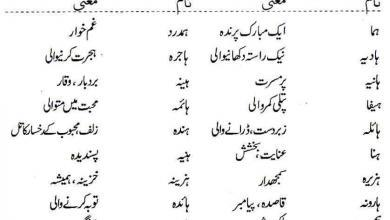 Photo of Islamic Names For Girls Starting With Hhay