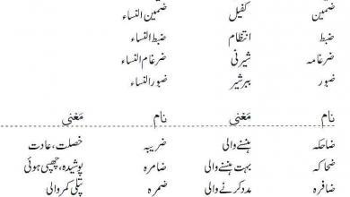 Photo of Islamic Names For Girls Starting With Zoad